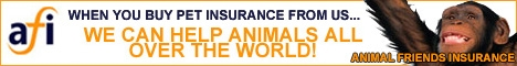 Animal Friends Insurance big banner